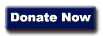 Donate now button for Salute to health