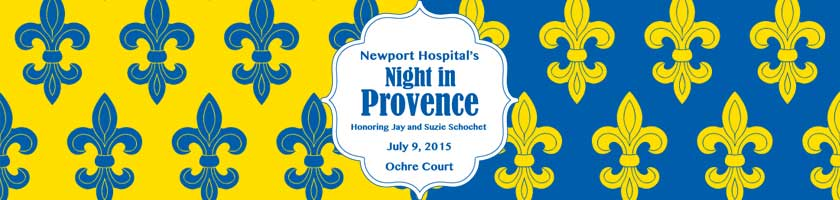 Night in Provence Banner